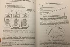 Grafik ve Şekil ile Anlatım
